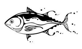 Drawing tuna fish, vector Stock Images