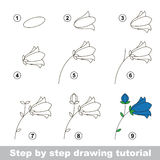 Drawing tutorial. How to draw a Campanula. Step by step drawing tutorial. Vector kid game. How to draw a Campanula Stock Photography