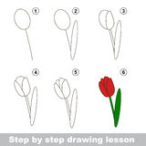 Drawing tutorial. How to draw a Tulip. Step by step drawing tutorial. Vector kid game. How to draw a Tulip Royalty Free Stock Photo