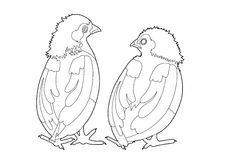 Drawing two birds conversation. Vector illustration of two birds, EPS 8 file Royalty Free Illustration