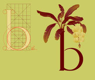 Drawing vintage letter b Royalty Free Stock Image