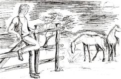 drawing of a young cow boy with horses royalty free illustration