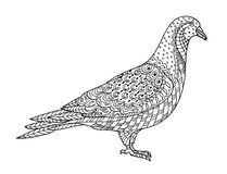 Drawing zentangle dove, for coloring book for adult or other decorations stock illustration