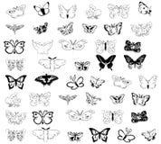Drawings of butterflies. Stock Image