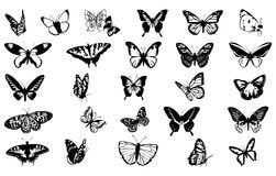 Drawings of butterflies Royalty Free Stock Images