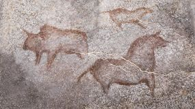 Drawings in a cave of ancient animals. Stone Age. Archeology. ancient man stock image
