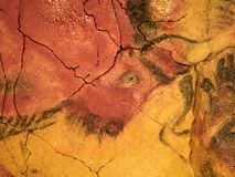 Drawings from the ceiling of Altamira cave in Santillana Del Mar, Cantabria, Spain. The drawings from the ceiling of Altamira cave in Santillana Del Mar Stock Photography