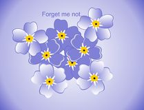 Drawings of forget me nots.... Stock Photos