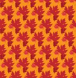 Drawn autumn background with beautiful leaves . Seamless pattern. Red maple leaves, Vector isolated or orange background vector illustration