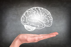 Drawn brain hovered over the human hand. On the gray wall background Stock Photo