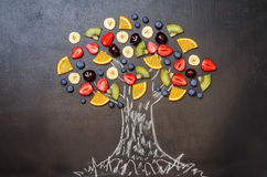 Drawn with chalk tree with fruit and berries. Toning. selective focus Stock Photos