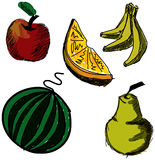 Drawn colored fruits. Vector illustration Stock Photography