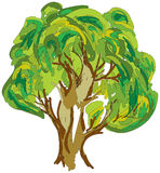Drawn colored green tree on white. Vector Royalty Free Stock Images