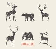 Drawn deers bears logotype vector illustration Stock Photography