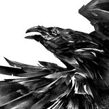 Drawn designer portrait of a raven on a white background stock image