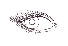 Drawn eye.Graphic style. Black pen Stock Photography