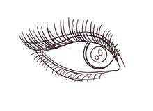 Drawn eye.Graphic style. Black pen.  Royalty Free Stock Image