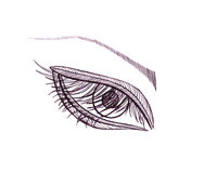 Drawn eye.Graphic style. Black pen.  Stock Images