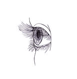 Drawn eye.Graphic style. Black pen. Isolated Royalty Free Stock Image