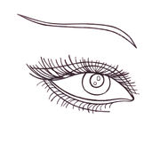 Drawn eye.Graphic style. Black pen. Royalty Free Stock Image