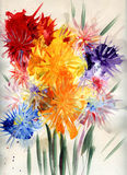 Drawn flowers Royalty Free Stock Photos