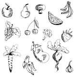 Drawn fruits and vegetables. Vector illustration Royalty Free Stock Photography
