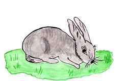 Drawn hare Royalty Free Stock Photography