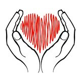 Drawn heart between the palms of the hands vector illustration