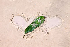 Drawn hearts and starfishes on wet sand Royalty Free Stock Image