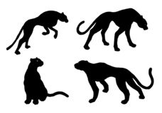 Drawn jaguar, leopard, wild cat, panther silhouettes vector illustration