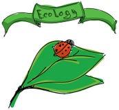 Drawn ladybird on leaf Stock Photos