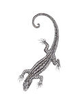 The drawn lizard on a white background in the style of pointilli Stock Images
