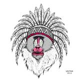 Drawn monkey. Mandrill in a Native American Indian chief. Red and black roach. Indian feather headdress of eagle. Vector illustrat. Ion Royalty Free Stock Images