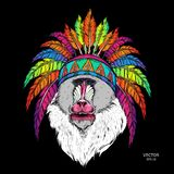 Drawn monkey. Mandrill in a Native American Indian chief. Red and black roach. Indian feather headdress of eagle. Vector illustrat. Ion Royalty Free Stock Photos