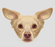 Drawn muzzle lop-eared dog Stock Images