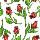 Drawn red roses seamless background. Flowers illustration front view. Handwork by felt-tip pens.  Royalty Free Stock Photos