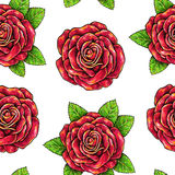 Drawn red roses seamless background. Flowers illustration front view. Stock Photos