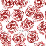 Drawn red roses on white beautiful seamless pattern. Beautiful seamless pattern of a drawn red roses on white stock illustration