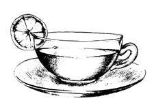 Drawn tea cup. Stock Photography