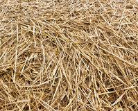 Dray hay stack background Stock Images