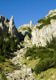 Dray mountain valley. One of the tributary valley of Gaura Canyon, in Bucegi mountains Royalty Free Stock Photos