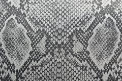 Draybakgrund som göras av hud av en orm eller hud av en reptil, CR royaltyfri foto
