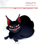Dreadful black cat Stock Image