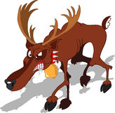Dreadful Reindeer Stock Photos