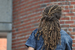 Dreadlocks Stock Image