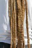Dreadlocks hairstyle of man.Hair dreadlocks reggae stile.  Stock Images