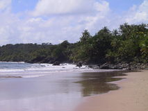 Dream beach. Secluded beach on the North Coast of Trinidad and Tobago Royalty Free Stock Photo