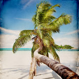 Dream Beach Grunge Background Stock Photography