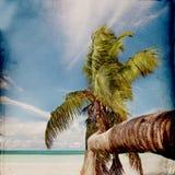 Dream Beach Grunge Background Royalty Free Stock Image