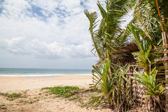 A dream beach at the Indian Ocean Stock Photos